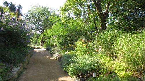 garden0708_06